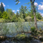 Reno – Riverwest Resort